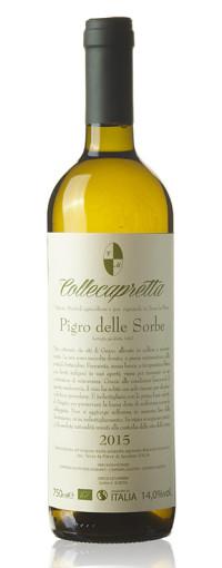 bottiglia_pigro_delle_sorbe_web
